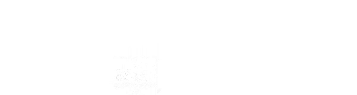 Websitegründer - Logo